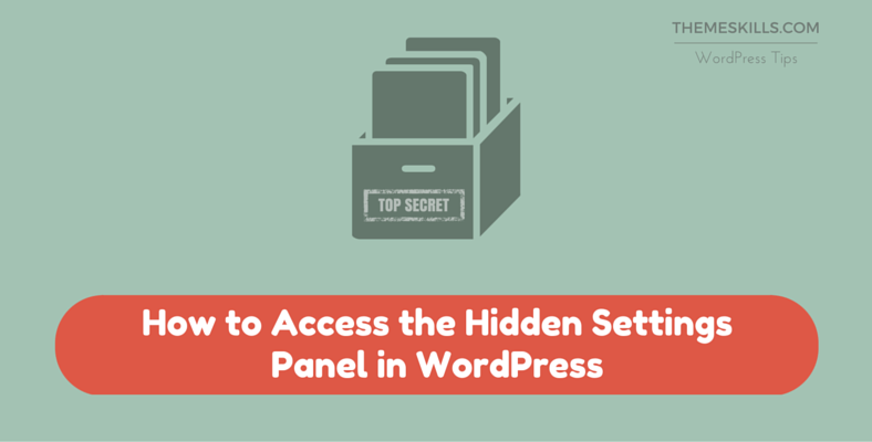 How to Access the Hidden Settings Panel in WordPress