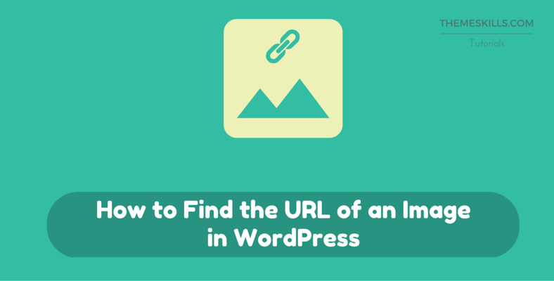 How to Find the URL of an Image in WordPress