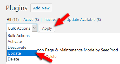 Bulk update plugins in WordPress