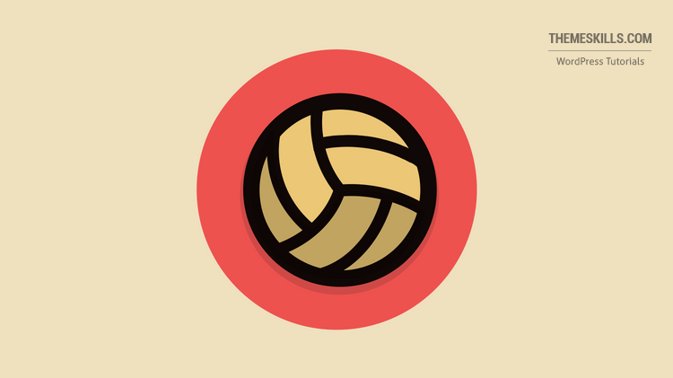 volley ball icon