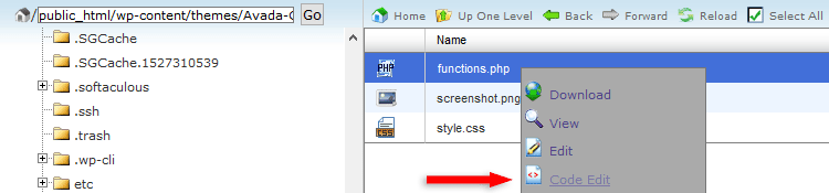 edit functions.php file in cpanel