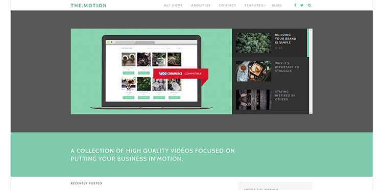 themotion wordpress video theme