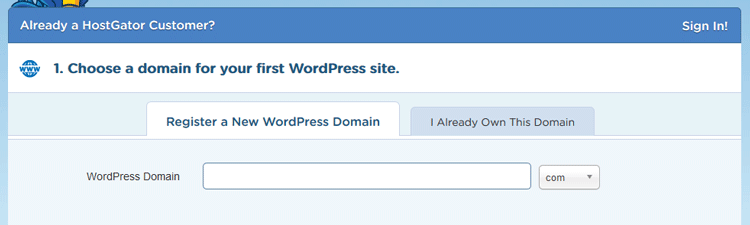 hostagtor wordpress hosting choosing domain name