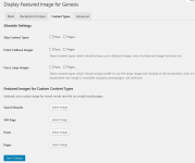 Display Featured Image for Genesis plugin content types settings
