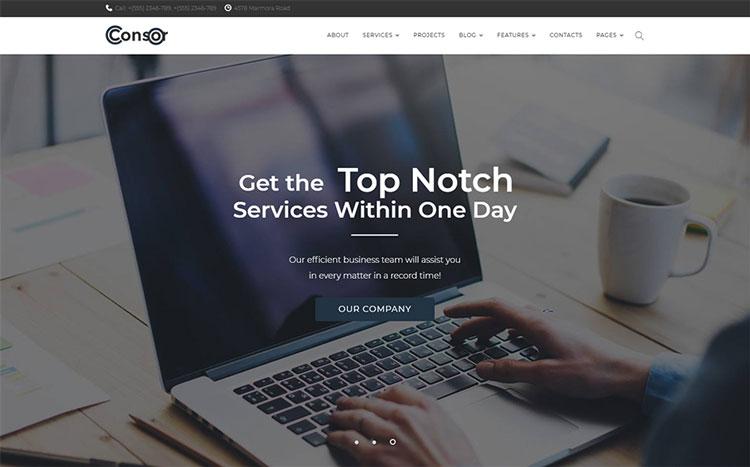 consor elementor business wordpress theme