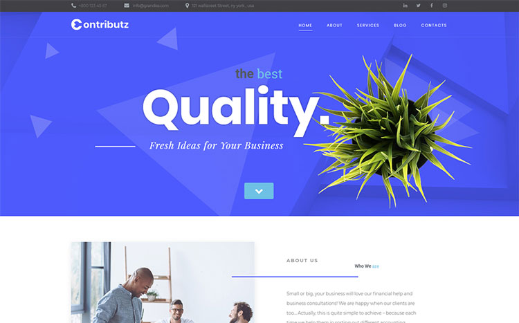 contributz elementor business wordpress theme