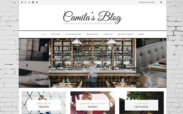 camila's blog wordpress travel theme