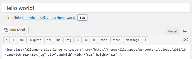 HTML img tag WordPress
