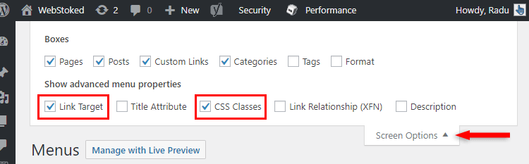 accessing screen options wordpress menu