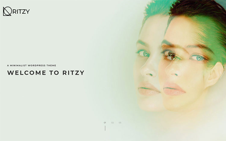 ritzy art wordpress theme