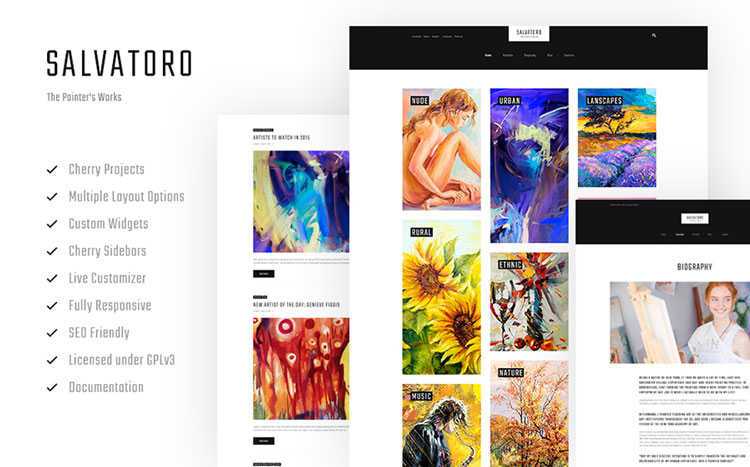 salvatoro art wordpress theme