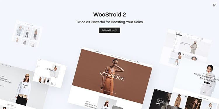 woostroid 2 woocommerce theme